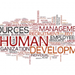 Human Resource Executive Resume Sample